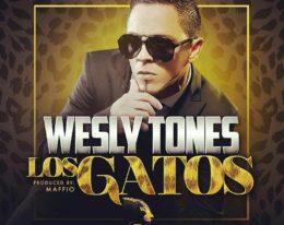 """Wesley Tones nos presenta """"Los Gatos"""", Producido por MAFFIO"""